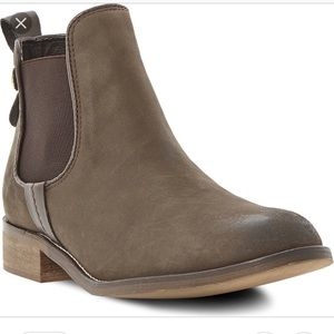Steve Madden Brown Chelsea Booties